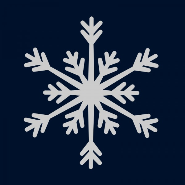 Reflektoraufbügler, Schneeflocke groß