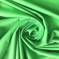 Alberto Bio-Jersey, grün