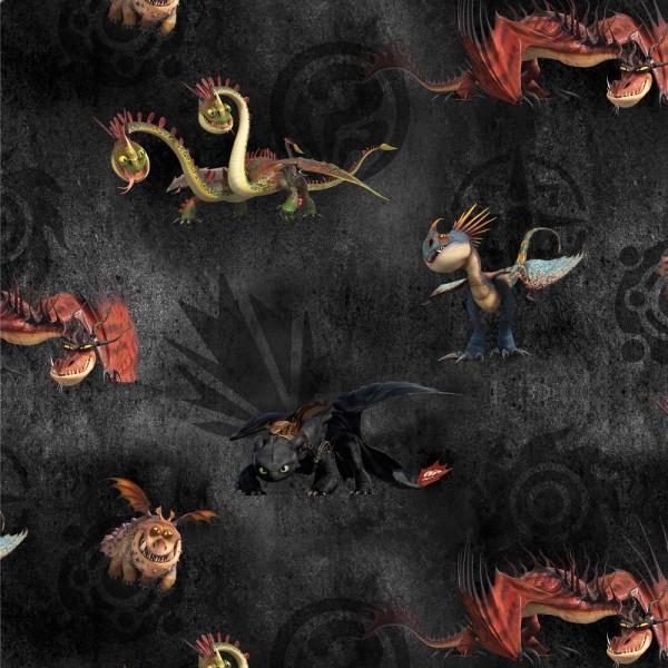 Digitaldruck, Drachenzähmer, Dragon schwarz, Sweat