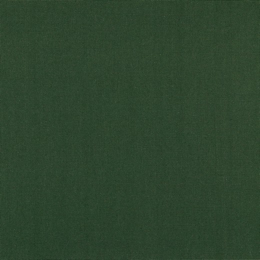 Canvas, dunkelgrün