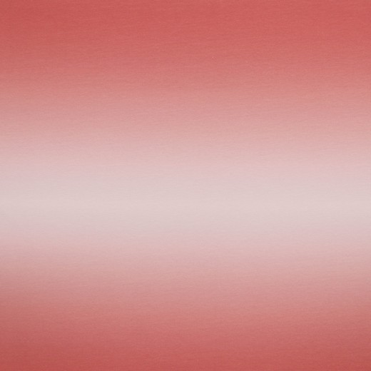 Digitaldruck Ombre korallrosa, Sweat