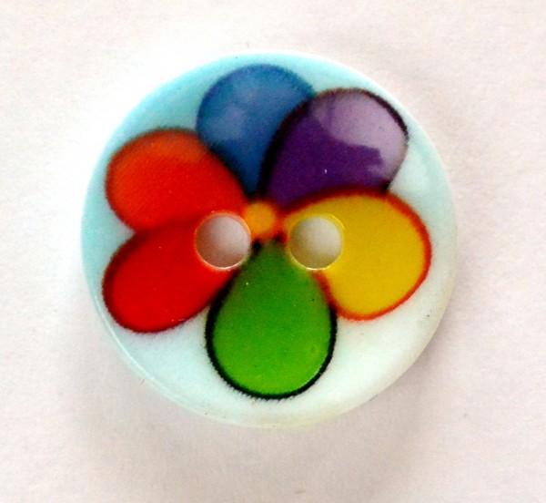 Regenbogenblume, Knopf