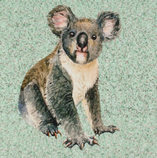 Koala mint Paneel, Sweat