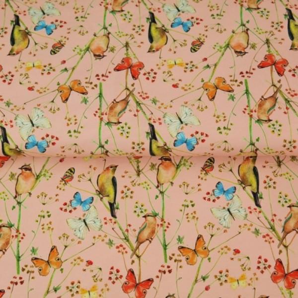 Stenzo Schmetterlinge und Vögel apricot, Popeline