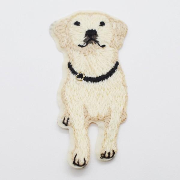 Applikation Hund weiß