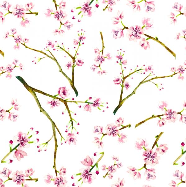 Baumwollpopeline Digitaldruck Kirschblüten rosa/weiß