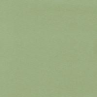 Pauli, Bio-Bündchen, shadow lime/lindgrün