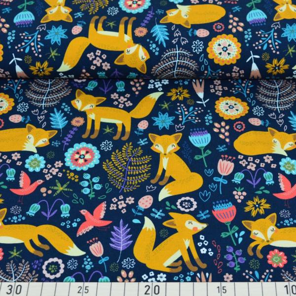 Softshell, Fuchs auf dunkelblau