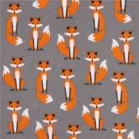 R. Kaufman, Tiny Foxes grey, Jersey