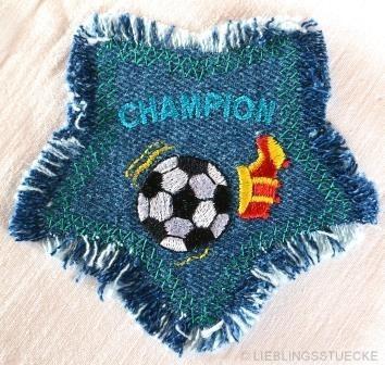 Applikation Champion